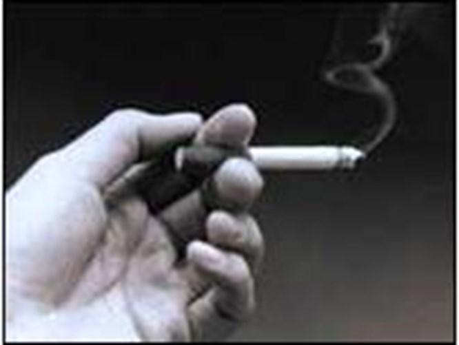 Plaster bahane sigara şahane